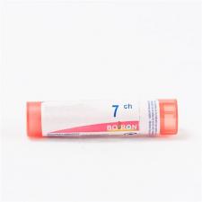 Holopai 12 Equisalud 31 Ml.