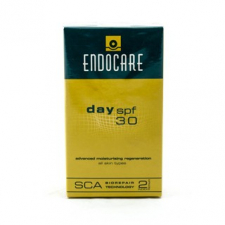 Endocare Day